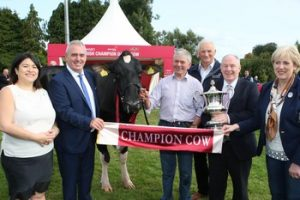 Hilltara Lanthority Echo 2 was crowned the Diageo Baileys Cow Champion at the 2017 Virginia Show. Pictured with the winning cow is Hazel Chu, Head of Corporate & Trade Relations for Diageo Ireland, Robert Murphy, Head of Baileys Operations, breeder Sam McCormick, Bangor, Co. Down, Henry Corbally, Chairman Glanbia Ireland, Minister for Rural and Community Development Michael Ring T.D. and Minister for Arts, Culture and The Gaeltacht Heather Humphries T.D.