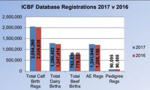 _calf-registerations-ICBF1cowsmo2017